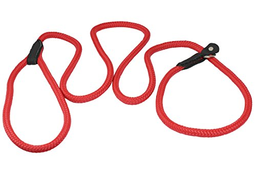 Dogs My Love Nylon Rope Slip Dog Lead Collar and Leash British Style 4ft Long (Small: 1/4
