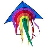 Rainbow Drachen