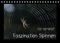 Voll vernetzt - Faszination Spinnen (Tischkalender 2022 DIN A5 quer): Ob im Netz oder im Gegenlicht, die Welt der Spinnen ist faszinierend (Monatskalender, 14 Seiten )