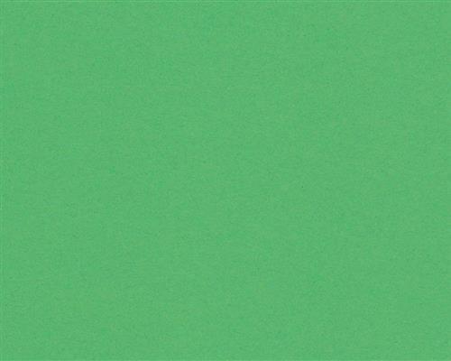 250 Blatt DIN A5 Billiard-Grünes farbiges 160g/m² Office-Papier. Hochwertiges Spitzenpapier Copy Laser Inkjet - Flyer Newsletter Poster Faxeingänge Wichtige Mitteilungen Warnhinweise Ordnungssysteme Memos