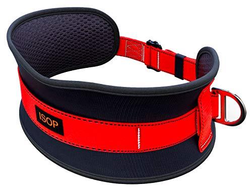 ISOP Cintura di Sicurezza con Cordino e Gancio - Cintura Anticaduta per Uomo Donna - 2d Anelli - Dimensione Universale