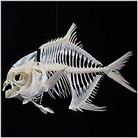 ゴールドポンフレット骨標本魚スケルトンモデル剥製用品ホームバーパーティーデスク装飾装飾用アートボーン面白いギフト