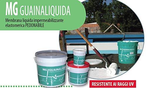 GUAINA LIQUIDA 1 kg - Membrana liquida impermeabilizzante elastomerica PEDONALE (ROSSO OSSIDO - 3009)