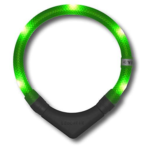 LEUCHTIE® Leuchthalsband Plus neongrün Größe 50 I LED Halsband für Hunde I 100 h Leuchtdauer I wasserdicht I enorm hell