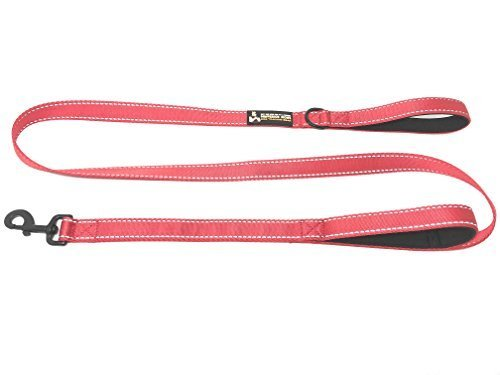 Buy One Give One To A Rescue Pawfessor Dion's Dog Training Gear Pawfessor Dion's 6ft Reflective Double Handle Traffic Dog Leash - Buy One and We Donate One to a Dog Rescue