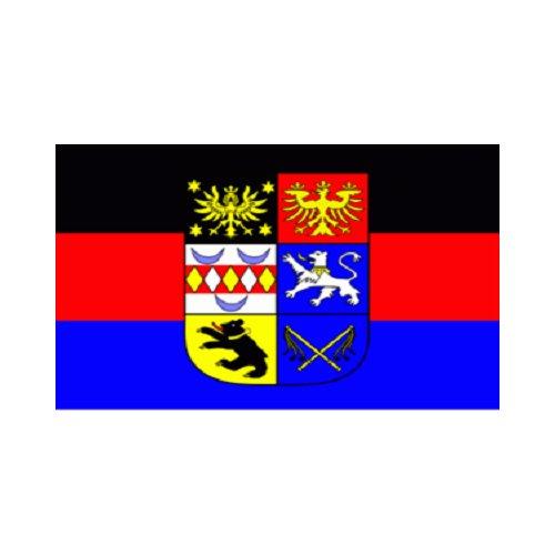 TS24direkt Ostfriesland Fahne (S12)