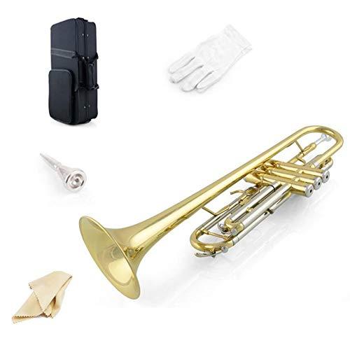 LVSSY-Bronce Estándar Trompeta Dos Tonos de Oro Lacado