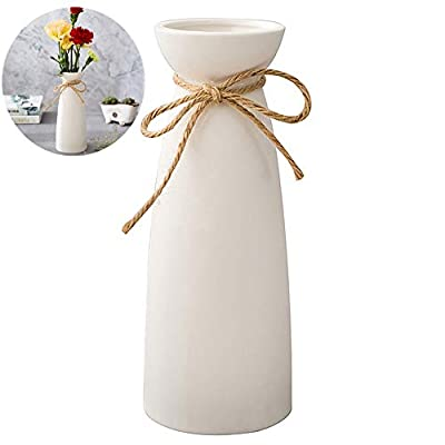 WEIDILIDU White Ceramic Vase Modern Home Decoration Porcelain Vase Vase Matte Design (weidilidu-735 White)