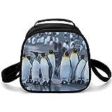 Bolsa Isotermica De Almuerzo Pingüino Bolsa Térmica Impresión Lunch Bag Para Playa Picnic Camping Barbacoa 20x20x12.5cm