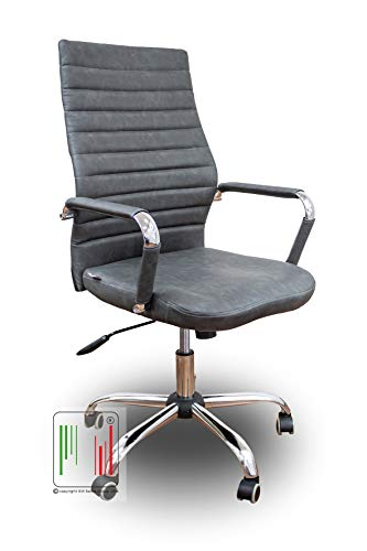 Stil Sedie - Poltrona da Ufficio per scrivania con Seduta in Ecopelle e Girevole con Base e braccioli in Acciaio Cromato Modello Dublino (Grigio)