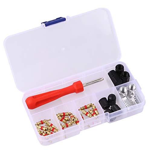 Wakauto 33 Stücke Ventileinsatzentferner Werkzeug mit Reifen Schrader Ventilschaft Kerne Und Kappen Ventileinsatzentferner Schrader Ventil Werkzeug