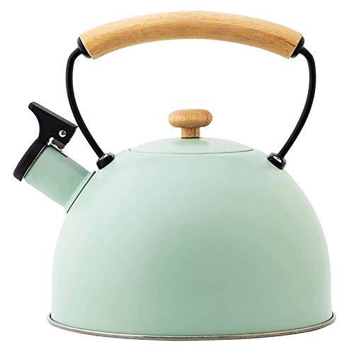 HUANLIAN 2.5L Estufa Top Tea Kettle Morden Green Grade Culinaria Tetera De Acero Inoxidable con La Manija Ergonómica del Tacto Fresco Y Recto