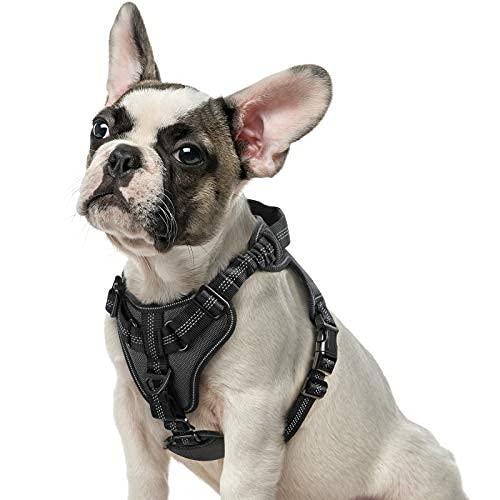 Arnés para perro sin tirar, arnés ajustable para caminar con 2 clips de correa y correas elásticas que absorben los golpes, suave..