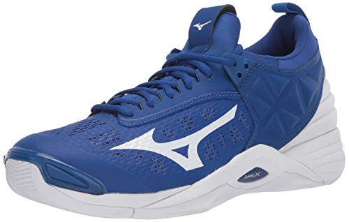 Mizuno Men's Wave Momentum Volleyball Shoe, True Blue-White, 11