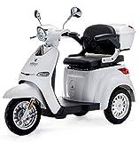 VELECO Scooter électrique de mobilité à 3 roues 1000W Cristal 3 couleurs (Argent)