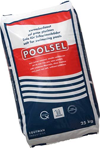 well2wellness® Poolsalz Poolsel für Salzelektrolyse - Salz für Schwimmbäder 25 kg