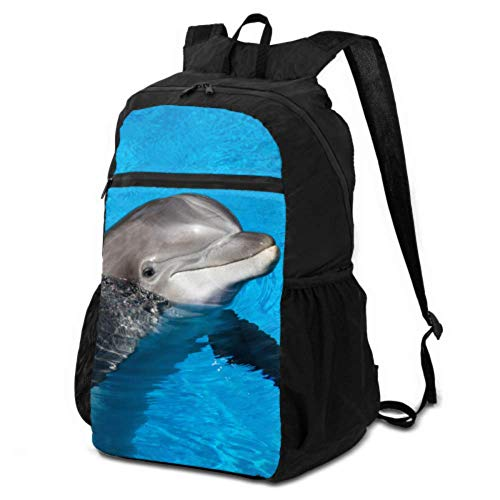 JOCHUAN Washable Packable Backpack Dolphin Underwater on Reef Look Washable Packable Backpack Backpack Packable Lightweight Waterproof for Men & Womentravel Camping Outdoor