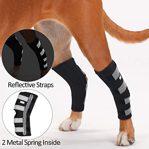 IN HAND Dog Rear Leg Hock Brace, Pair of Canine Dog Leg Joint Wraps Compression Brace Protects...