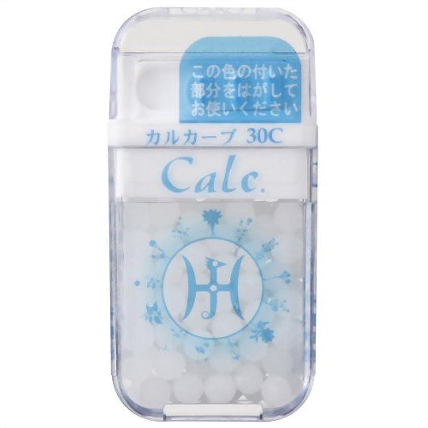 無駄な摂動正当化するホメオパシージャパンレメディー Calc.  カルカーブ 30C (大ビン)