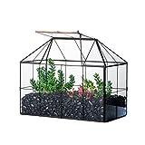 NCYP Terrarium géométrique en verre en forme de maison, grillage noir, décoration pour plantes grasses, cactus aériens, pot miniature, centre de table moderne (sans plante)