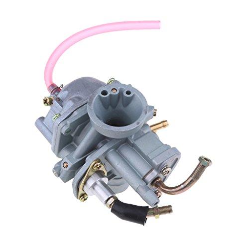 Baoblaze Carburateur Fixé pour Eton Viper