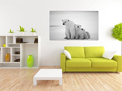 Eisbären Eisbär 3D Look Wandtattoo 70 x 115 cm Wanddurchbruch Wandbild Sticker Aufkleber DesFoli © R106