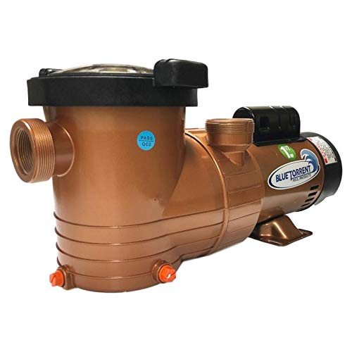Swimming Pool Pump by Blue Torrent, Above Ground Pool Pump with Timer, 1.5 HP