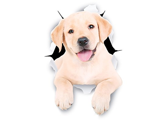 Winston & Bear Perro 3D pegatinas lindo Labrador blanco - 2 Pack - pegatinas para pared, nevera blanco Labrador pegatinas