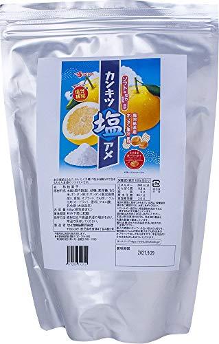 ボンタンアメ ランドアート カンキツ塩アメ 鹿児島県産ボンタン果汁使用 640g袋入 塩飴 熱中症対策 塩分補給 対策グッズ