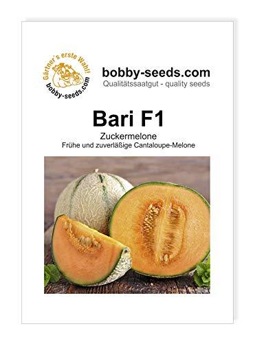 Melonensamen Bari F1 Zuckermelone