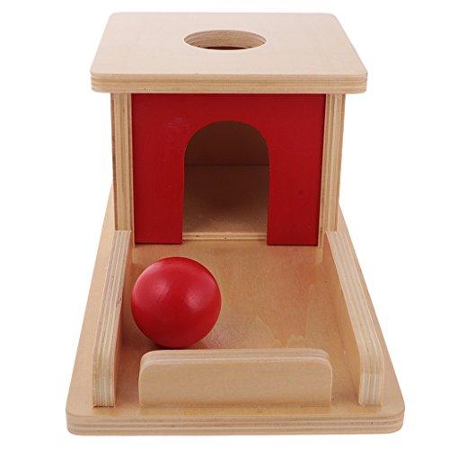 PETSOLA Montessori Wood Ball Matching Box Apprendre La Formation Pédagogique Kids
