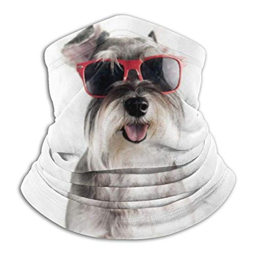 Eliuji Happy Funny Cool Dog Schnauzer con gafas de sol rojas aisladas sobre fondo blanco lavable pasamontañas moda variedad toallas de cara para los hombres que viajan museo aquí y allá