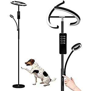 Anten Floor Lamp for Living Room | Modern Rotatable Tall Standing Lamp with Reading Light | Stepless Dimming and 3K-6K Color Temperature | Black Metal Floor Lamp with Touch & Remote Control