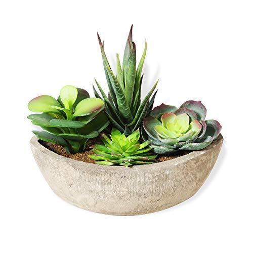 HAUSPROFI 4-in-1 Künstliche Sukkulenten Pflanzen mit Töpfen für Haus Balkon Büro Deko