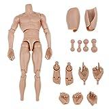 1/6 Escala de 12 Pulgadas Cuerpo Desnudo Muscular de Figura Acción para Esculpir Cabeza Caliente...