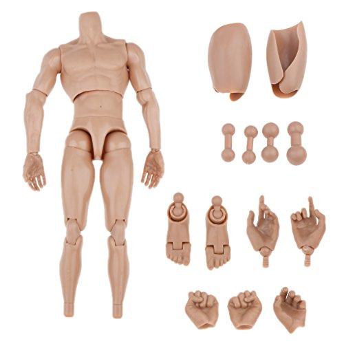 1/6 Escala de 12 Pulgadas Cuerpo Desnudo Muscular de Figura Acción para Esculpir Cabeza Caliente