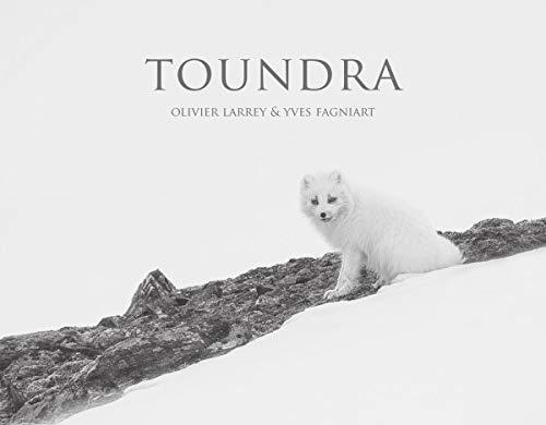 Toundra (Livre Plus Film) (OUVRAGES NATIONAUX GRAND PUBLIC)