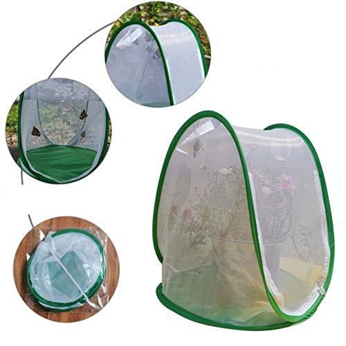 Banane Insekten- und Schmetterlings-Gewächshaus-Zelt, faltbar, mit Reißverschluss, Netzgewebe