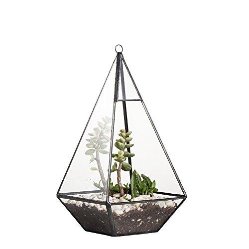 Moderno terrario geométrico de cristal con forma de pirámide para colgar en soporte de pared, DIY, transparente, maceta decorativa abierta, para helecho, musgo, 24 cm de altura