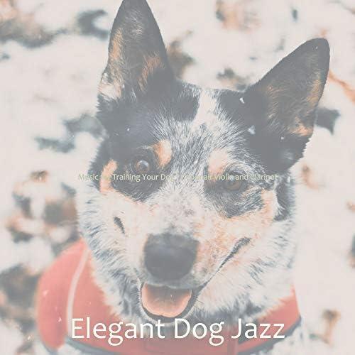 Elegant Dog Jazz