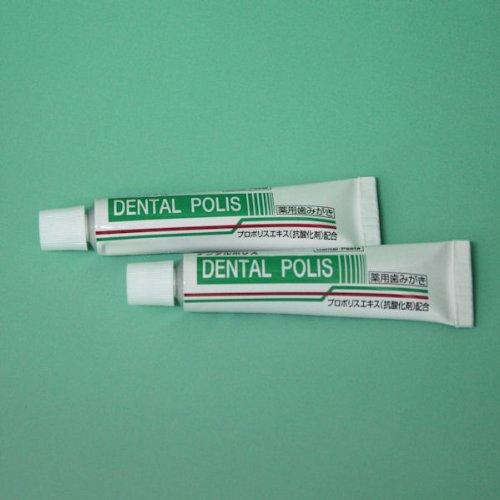 日本自然療法 デンタルポリスDX プロポリス配合ハミガキ 80g