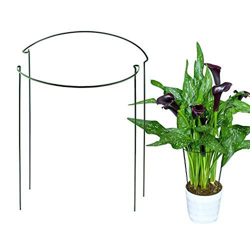 AIEX 2 Piezas Soporte para Plantas Metal Soporte para Vástago de Jardín Anillo de Soporte para Plantas para Flor, Rosa, Tomate, Lirio, Peonía (40cm x 25cm)