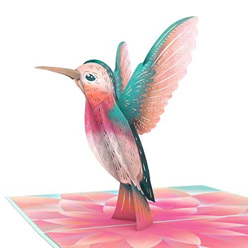 Lovepop Lovely Hummingbird Pop Up Card - 3D Card, Anniversary Pop Up Card, Bird Card, Card for Mom, Card for Wife, Pop Up Birthday Card, Mother's Day Pop Up Card, Spring Card, Nature Card
