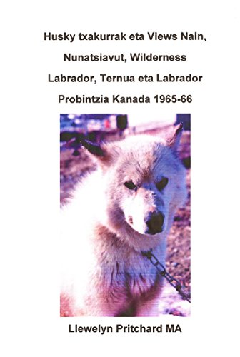 Husky txakurrak eta Views Nain, Nunatsiavut, Wilderness Labrador, Ternua eta Labrador Probintzia...
