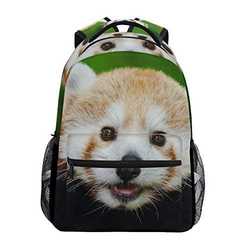 poiuytrew Cute Red Panda Backpack Estudiantes Bolsas de Hombro Bolsa de Viaje Mochilas Escolares