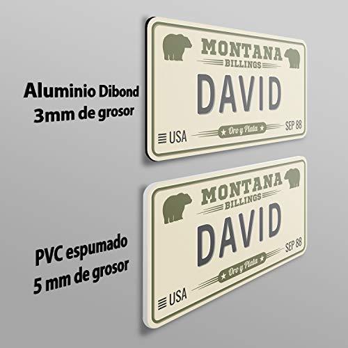 MEGADECOR Placa de Matrícula Decorativa de Aluminio o PVC Impreso de Estilo Vintage Americano con Nombre David 8 Modelos (New York, PVC 5mm)