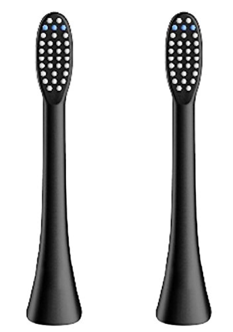 気を散らす新鮮な手配する(正規品)InfinitusValue スマートトラッキング電動歯ブラシ専用替えブラシ レギュラーサイズ 2本組 ブラック IVHB01BBR2
