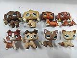 8 pcs/Set Littlest Pet Shop Dachshund Dog Short Hair Cat Cocker Spaniel Dog Collie Dog LPS Animal Figure Toys