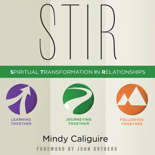 STIR audiobook cover art