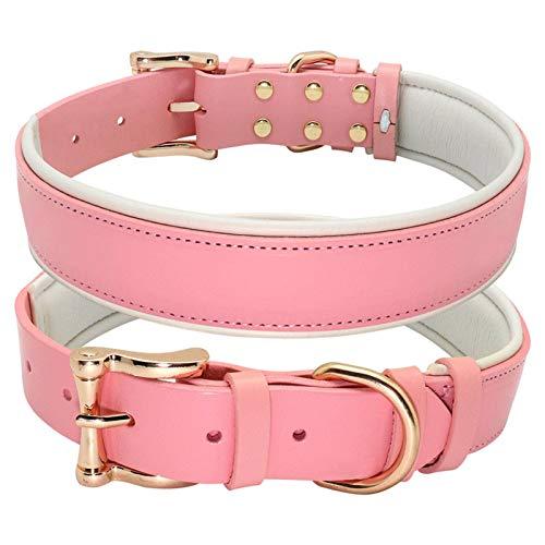 N-B Collar de Perro Collares de Cuero, Collares de Perro Grandes Collar de Cachorro de Mascota Acolchado Ajustable sólido, para Perro pequeño, Mediano